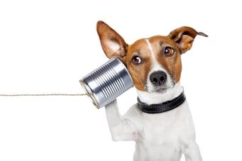 Comment améliorer la communication en entreprise
