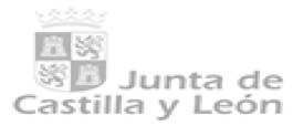 Junta de Castilla y Leon.png