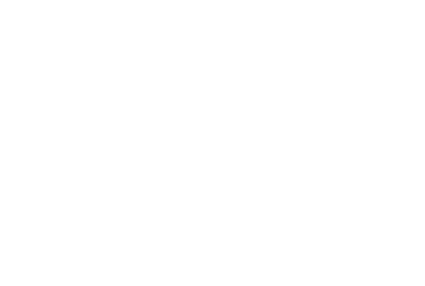 gfi-logo_white